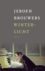 Winterlicht (e-Book)